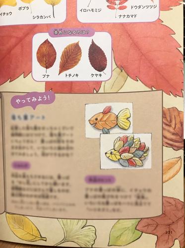 紅葉のイラストページ